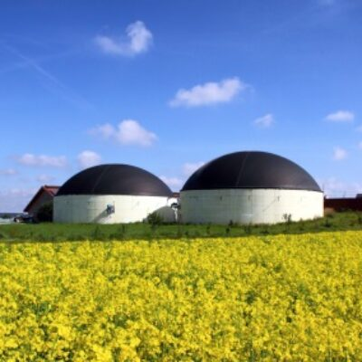 EBIPREP: Utilisation efficiente de la biomasse pour une production durable d'énergie et de matériaux biotechnologiques
