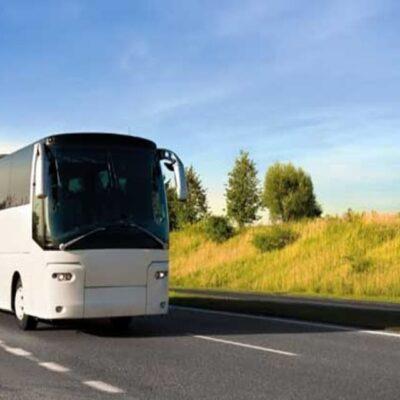 THNS COLMAR-BREISACH – Transport à Haut Niveau de Service Colmar – Breisach