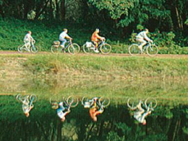 Chalampé / Neuenburg à Vélo #2 - Élargissement de 3 ponts et aménagements de voirie et en faveur des modes doux