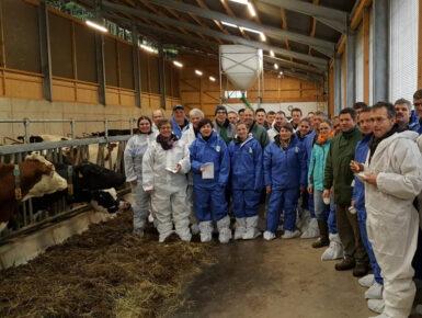 ELENA :  Une montée en compétence de l'élevage en Rhin Supérieur pour consolider les filières de production et d'approvisionnement.