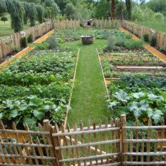 Jardins solidaires du Dreiland : cultivons l'alimentation responsable !