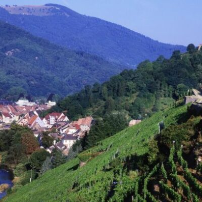 Marketing International de la Destination UPPER RHINE VALLEY
